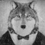 https://forum.linuxmint.pl/uploads/avatars/avatar_1412.png?dateline=1632039135